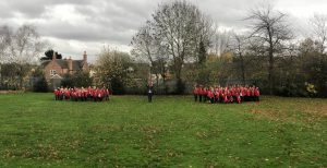 Whole School Poppies