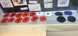 Year 1 Poppies