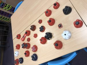 Year 5 and 6 Poppies